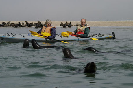 Jeanne Meintjes of Eco-Marine kayak tours in Walvis Bay and her tourist admire the seals / Mike Lloyd