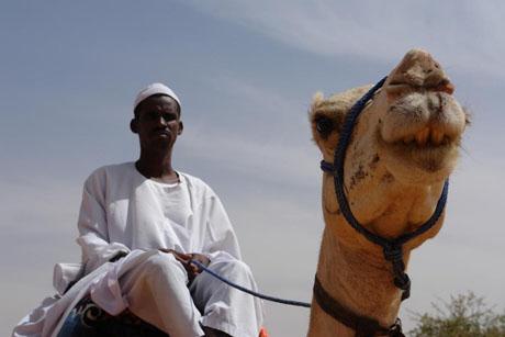 sudan-cover-image