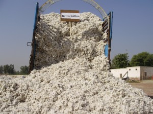 A truckload of the first 'Better Cotton' crop - Better Cotton Initiative