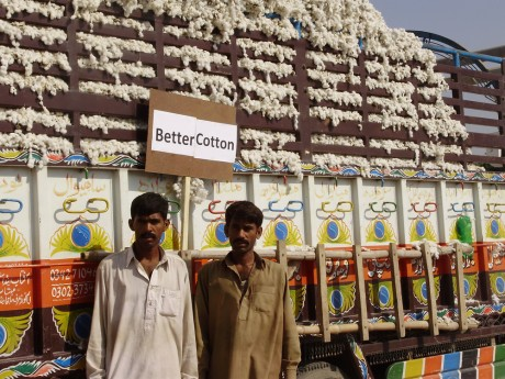 Two farmers stand beside the first crop of 'Better Cotton' in 2010 - Better Cotton Initiative