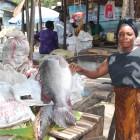 Rebecca Namayanja at a local fish market - Kabangala Mohammed   Panos London
