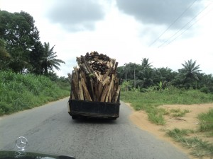 Fuel wood being transported out of the town - Armsfree Ajanaku | Panos London