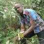 Okoikpi inspecting a tree seedling in the Akasanko forest - Armsfree Ajanaku | Panos London