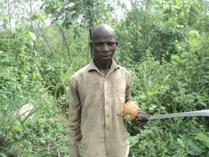 A lone pineapple farmer in the forest; he gave his name as 'Money Hard' - Armsfree Ajanaku | Panos London