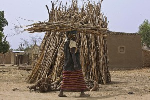Women in rural Mali collect firewood to sell - Andrew Esiebo | Panos London